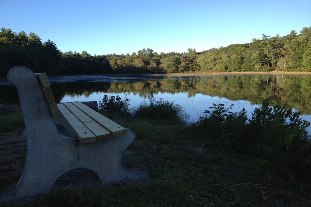 bench hawkins pond